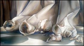 Croft, Dene - Still Life Shell Study