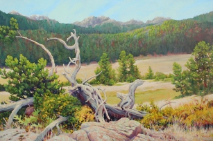 High Country Resting Place by Jack Turpin, Acrylic