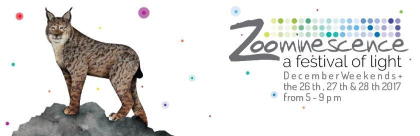ZoomLg2